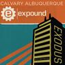 02 Exodus - 2011 (Unabridged) Audiobook, by Skip Heitzig