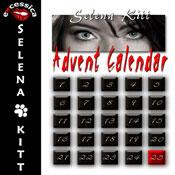 Advent Calendar (Unabridged), by Selena Kitt