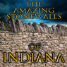 The Amazing Stonewalls of Indiana Audiobook, by Rick Osmon