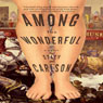 Among the Wonderful: A Novel (Unabridged) Audiobook, by Stacy Carlson