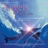 Angels of the Blue (Unabridged), by Jan Yoxhall