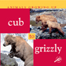 Animals Growing Up: Cub to Grizzly (Unabridged) Audiobook, by Jason Cooper