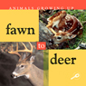 Animals Growing Up: Fawn to Deer (Unabridged) Audiobook, by Jason Cooper