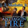 Antiagon Fire: Imager Portfolio, Book 7 (Unabridged), by L. E. Modesitt Jr.