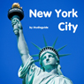 Audio Guide New York City (Unabridged) Audiobook, by Andi Arndt