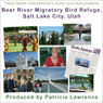 Audio Journeys: Bear River Migratory Bird Refuge, Salt Lake City, Utah Audiobook, by Patricia L. Lawrence