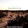Awakening: The Lost Elf Series, Book 1 (Unabridged) Audiobook, by Scott David Brown