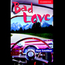 Bad Love (Unabridged) Audiobook, by Sue Leather