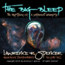 The Big Bleep: The Mystery of A Different Universe (Unabridged) Audiobook, by Lawrence R. Spencer