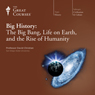 Big History: The Big Bang, Life on Earth, and the Rise of Humanity Audiobook, by The Great Courses