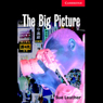 The Big Picture (Unabridged) Audiobook, by Sue Leather