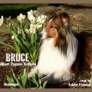 Bruce: A Collie Story of Bravery and Great Adventure (Unabridged) Audiobook, by Albert Payson Terhune