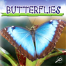 Butterflies (Unabridged), by Jason Cooper