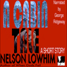 A Cabin Tale (Unabridged) Audiobook, by Nelson Lowhim