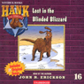 The Case of the Blinded Blizzard (Unabridged), by John R. Erickson