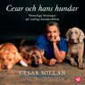 Cesar och hans hundar: Naturliga lOsningar pa vanliga hundproblem (Cesar and His Dogs: Natural Solutions for Common Dog Problems) (Unabridged) Audiobook, by Cesar Milan