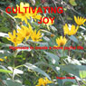 Cultivating Joy: Hypnosis to Create a More Joyful Life Audiobook, by Maggie Staiger