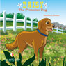 Daisy the Protector Dog (Unabridged) Audiobook, by Heather L. Nelson