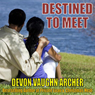 Destined to Meet: Kimani Romance (Unabridged) Audiobook, by Devon Vaughn Archer