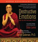 Destructive Emotions: A Scientific Dialogue with the Dalai Lama, by Daniel Goleman