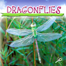 Dragonflies (Unabridged) Audiobook, by Jason Cooper