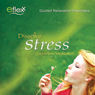 The Eflexx Awareness Meditation: Dissolve Stress (Unabridged), by Mike Angulo