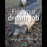Find Your Dream Job: 52 Brilliant Little Ideas for Total Career Happiness (Unabridged), by Ken Langdon