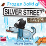 Frozen Solid at Silver Street Farm (Unabridged) Audiobook, by Nicola Davies