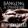 Gay Sex Confessions #3: Banging a Stranger (Unabridged) Audiobook, by Rod Mandelli