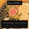Good Medicine Audiobook, by Pema Chodron