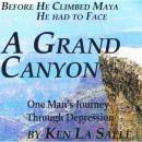 A Grand Canyon: One Mans Journey Through Depression (Unabridged) Audiobook, by Ken La Salle