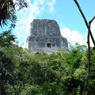 Guatemalas Tikal National Park - Animals and Plants: Audio Journeys (Unabridged) Audiobook, by Patricia L. Lawrence