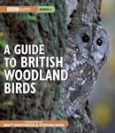 A Guide to British Woodland Birds (Unabridged) Audiobook, by Stephen Moss