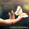 Guided Meditation for Natural Pain Relief: Headache Relief, Muscle Pain & Soreness, Sports Injuries, Silent Meditation, Self Help Hypnosis & Wellness Audiobook, by Val Gosselin
