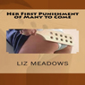 Her First Punishment of Many to Come (Unabridged) Audiobook, by Liz Meadows