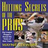 Hitting Secrets of the Pros (Unabridged), by Wayne Stewart