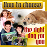 How to Choose the Right Dog for You (Unabridged), by Therapeutick