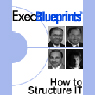 How to Structure IT: Finding the Right Organizational Design: ExecBlueprint (Unabridged) Audiobook, by Lori Polep