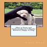 How to Train and Understand Your Labrador Retriever Puppy or Dog (Unabridged) Audiobook, by Vince Stead