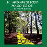 Il meraviglioso mago di Oz (The Wonderful Wizard of Oz) (Unabridged) Audiobook, by L. Frank Baum