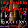 Impossible Gay Lovers, Vol. 2 - Illicit Encounters: Directed Erotic Visualisation (Unabridged) Audiobook, by Essemoh Teepee