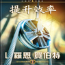 Increasing Efficiency (Chinese Edition) (Unabridged) Audiobook, by L. Ron Hubbard