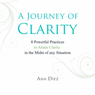 A Journey of Clarity (Unabridged), by Ana Diez