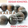 Karma: Finding Freedom in This Moment, by Pema Chodron