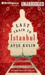 Last Train to Istanbul Audiobook, by Ayse Kulin