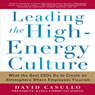Leading the High Energy Culture: What the Best CEOs Do to Create an Atmosphere Where Employees Flourish (Unabridged) Audiobook, by David Casullo