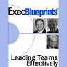 Leading Teams Effectively: How HR Can Drive Company Productivity: ExecBlueprint (Unabridged) Audiobook, by Steve Fitzgerald