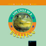 Life Cycles: Bullfrog (Unabridged) Audiobook, by Jason Cooper