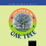Life Cycles: Oak Tree (Unabridged) Audiobook, by Jason Cooper