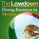 The Lowdown: Doing Business in Mexico (Unabridged) Audiobook, by Christopher West